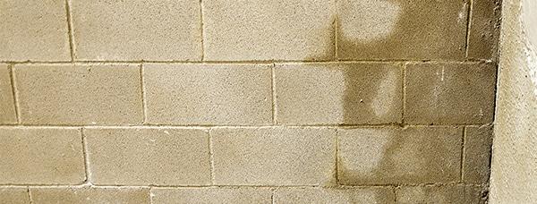 Wet cement brick wall