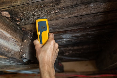 Mold measuring in joist